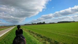Mosselweg