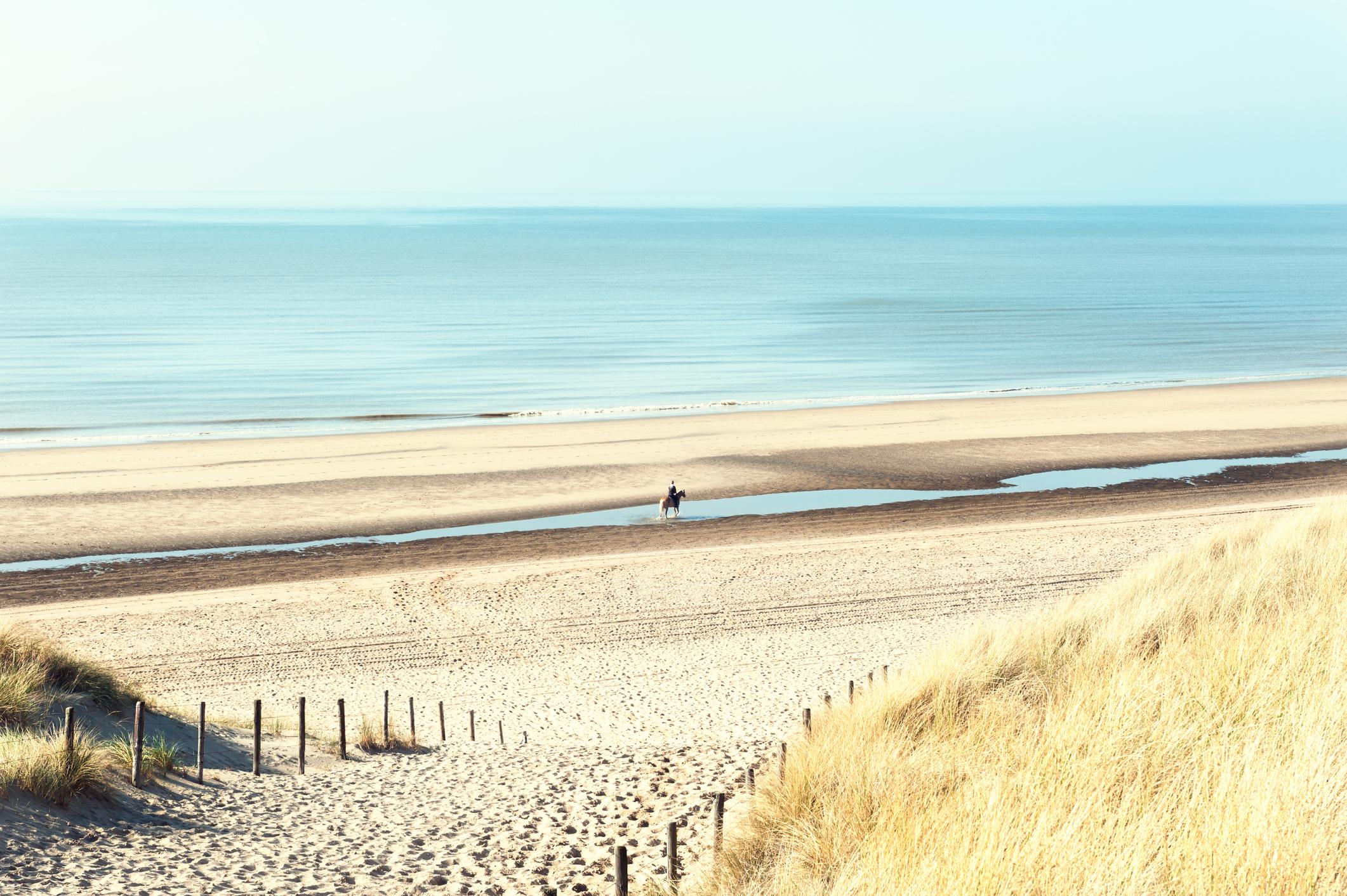 Sandy dunes on the sea coast in Noordwijk, Netherlands, Europe.